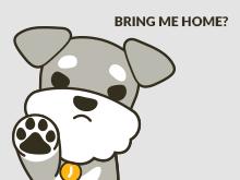 Bring me home?